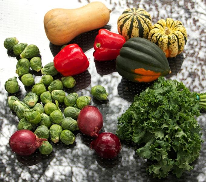 squash-raw-veggiesweb