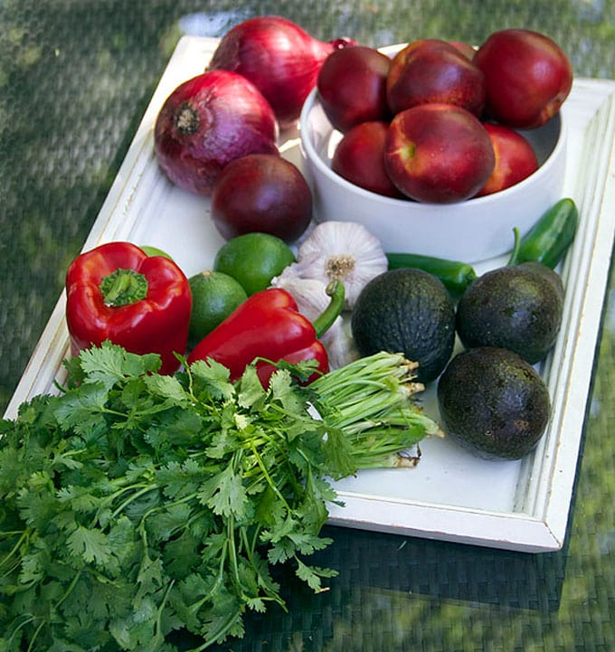 nectarine salsa ingredients
