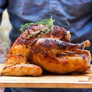 Spicy Yogurt Marinated Turkey recipe by Panning The Globe