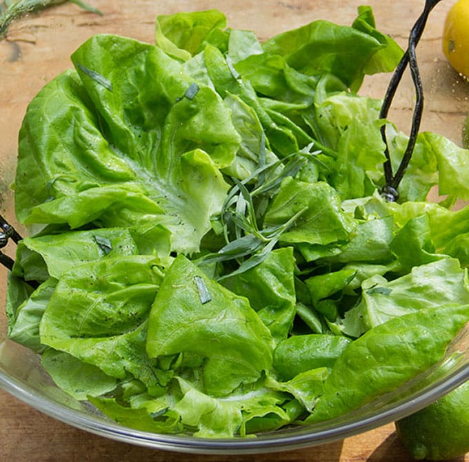 Butter Lettuce Salad with Citrus Honey Vinaigrette - Panning The Globe