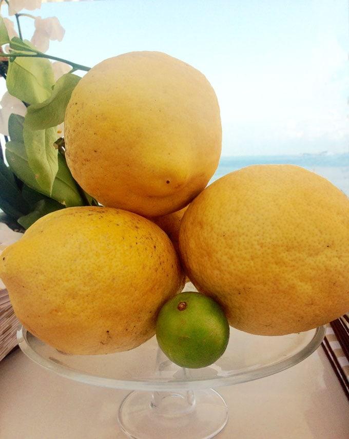 giant Amalfi lemons