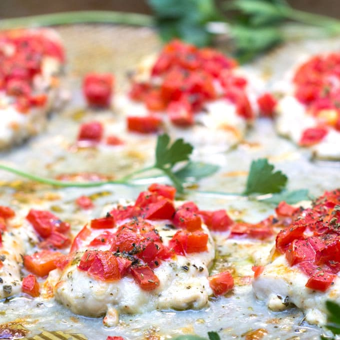 Chicken pizzaiola on a baking pan with tomatoes and herbs