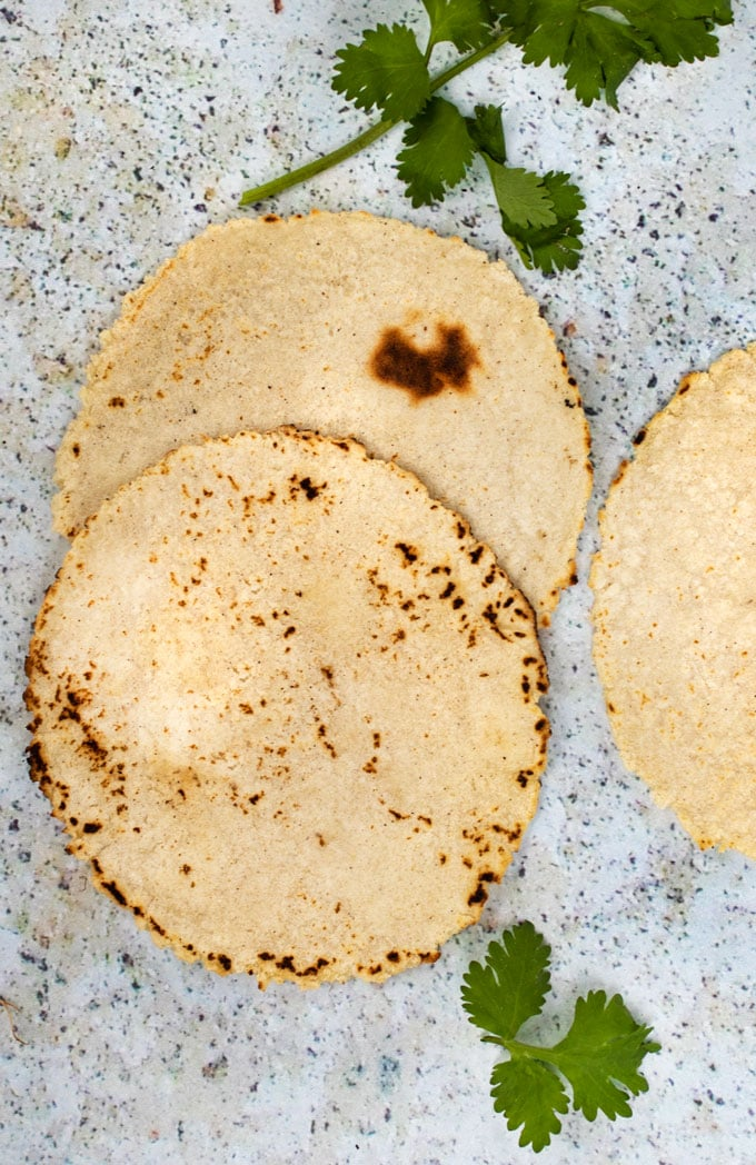 close up shot of two freshly made corn tortillas on a light blue speckled countertop with a couple of cilantro sprigs