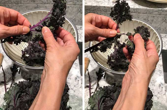 Show how to remove thicks stems from kale leaves to prepare kale for salad