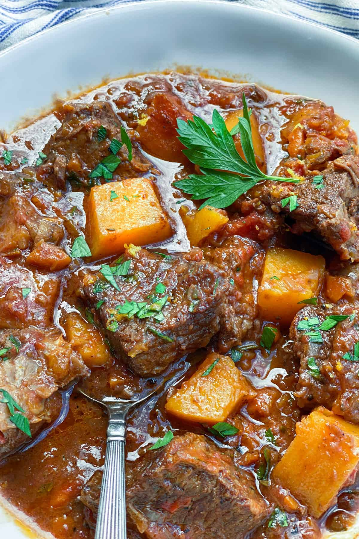 closeup of a bowl of beef short ribs stew with butternut squash and a sprig of parsley